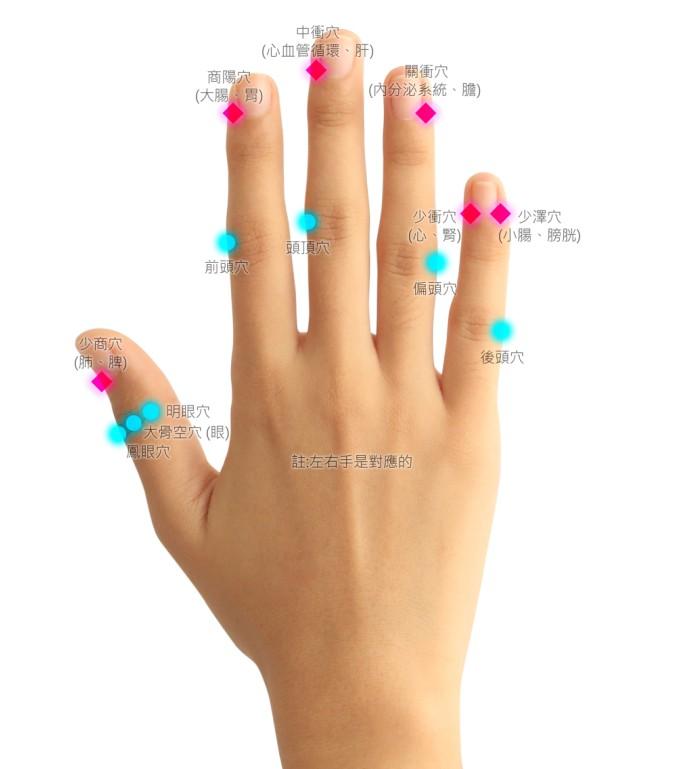 手指井穴圖示參考